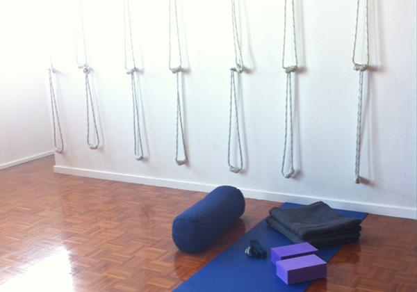 Yoga Ropes & INVERSION PROPS