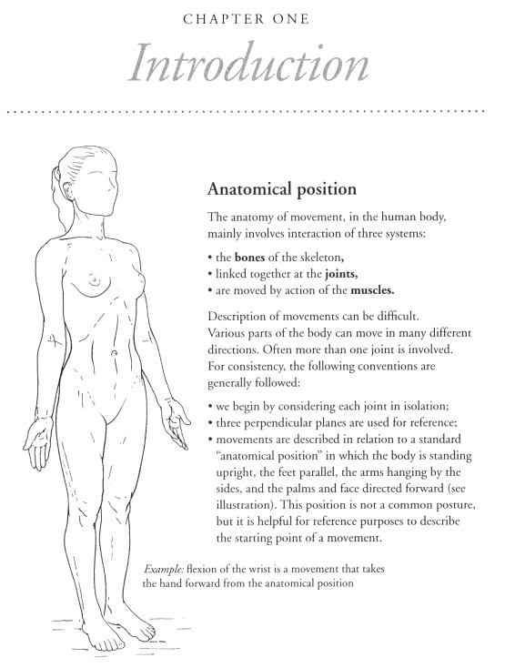 Anatomy Of Movement Yoga Products Online Iyogaprops Australia