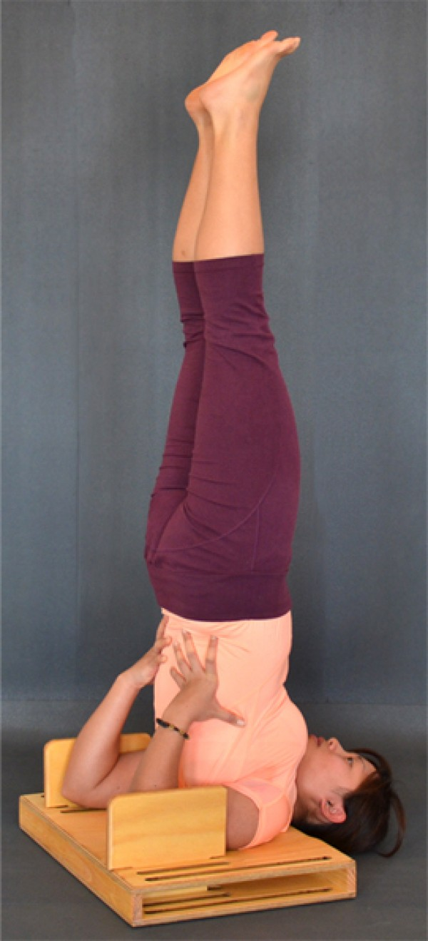 Shoulder stand - iYoga Multi Function Prop