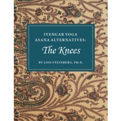 Iyengar Yoga Asana Alternatives: The Knee BOOK