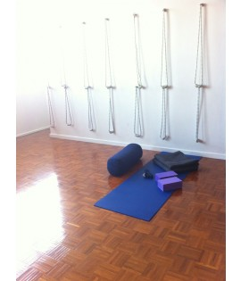 2 Yoga Wall Ropes - pair of long or short