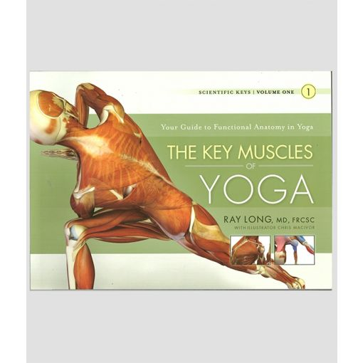 The Key Muscles of Yoga Cover