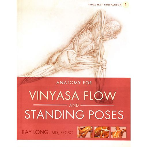 Anatomy for Vinyasa Flow & Standing Poses