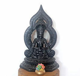 Yogic Guidance for Difficult Times