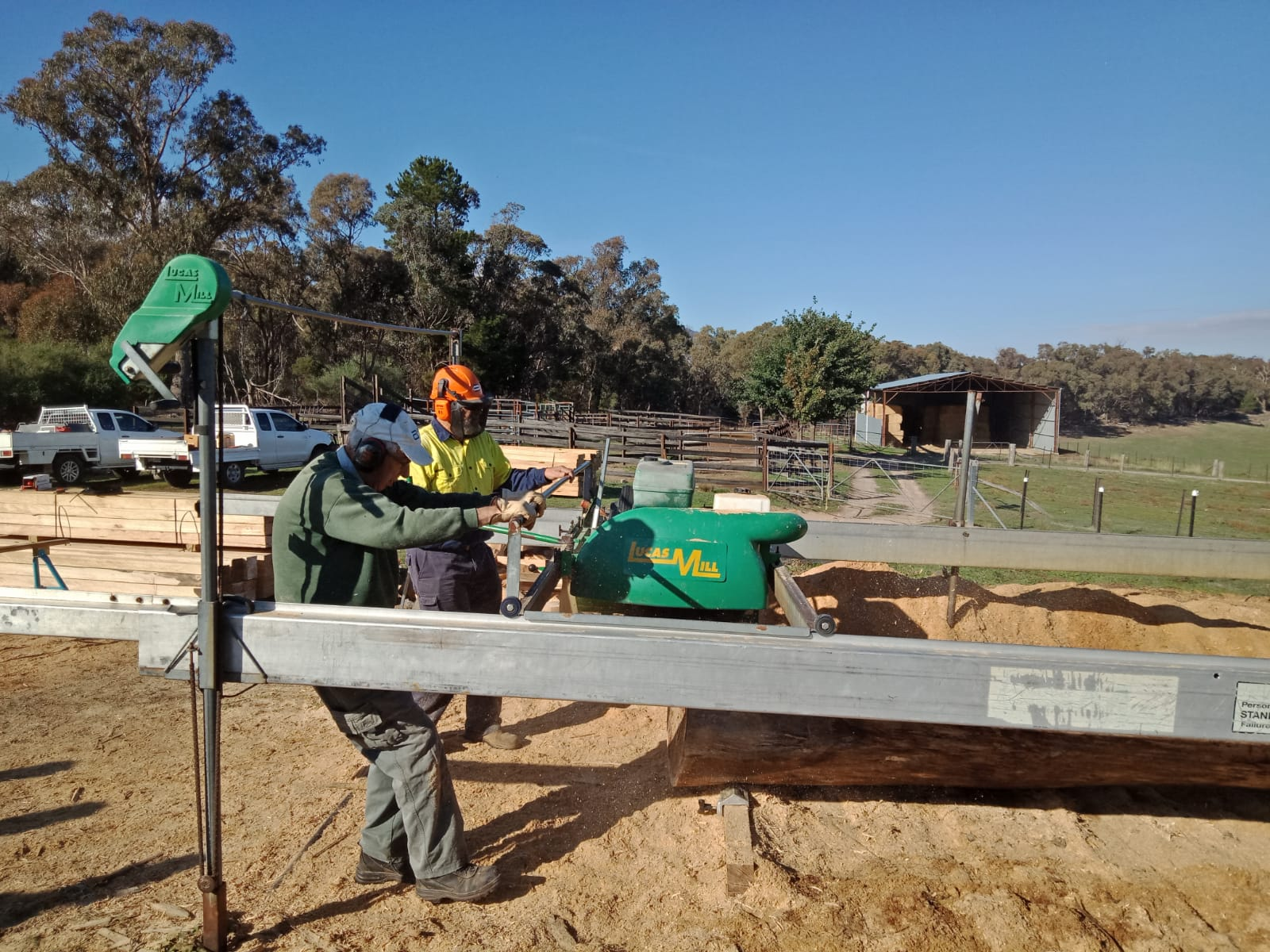 MIck on a bigger timber [project. Repairing a bridge on the Beechworth Rail Trail